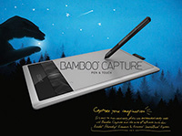 Bamboo Capture
